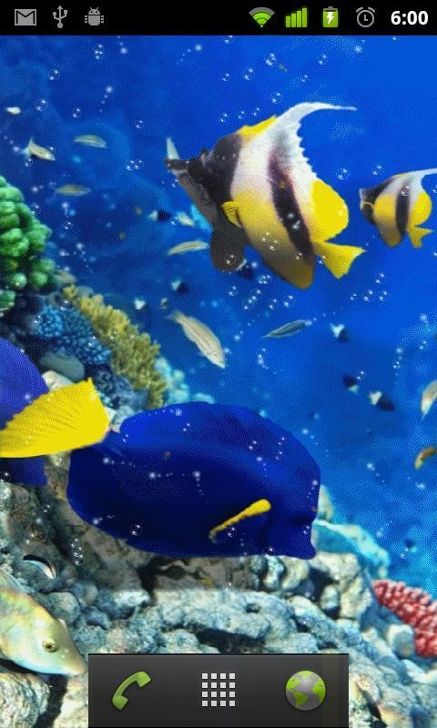 red sea fish live wallpaper android apps on google play