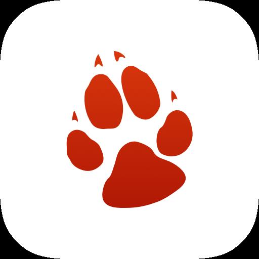 Wiley the Wolf | Great Wolf Lodge Wiki | Fandom