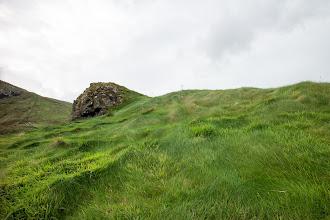 Photo: Grassy Hillside