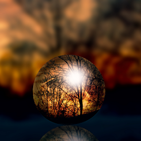 Fiery Night by Lawrence Ferreira - Digital Art Places ( reflection, fiery night, crystal ball, sun down, mysterious, reflections, sphere, forest, ball of light, glass globe, relaxing, landscape, shadows, nightscape, sunset, nighttime, digital art, trees, scenery, night sky, globe, golden hour,  )