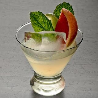 Tequila Citrus Mint Cocktail.
