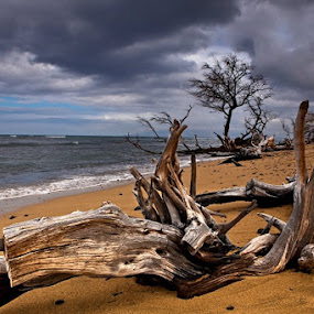 Ukumehame Beach, Maui by Richard Saasta - Landscapes Waterscapes
