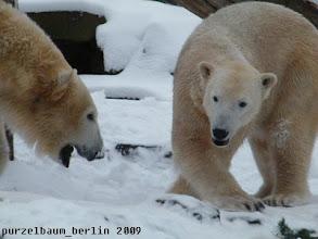 Photo: Knut und Gianna wuenschen einen guten Morgen :-)