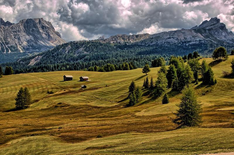 La natura non è un posto da visitare, è casa nostra di maurizio_longinotti