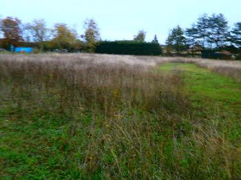 terrain à Reuilly (36)