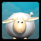 Sheep Camp
