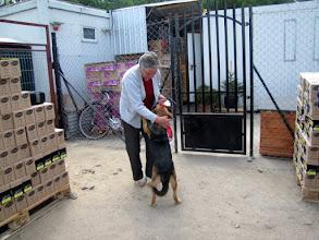Photo: Holi poszła do nowego domu w Morągu