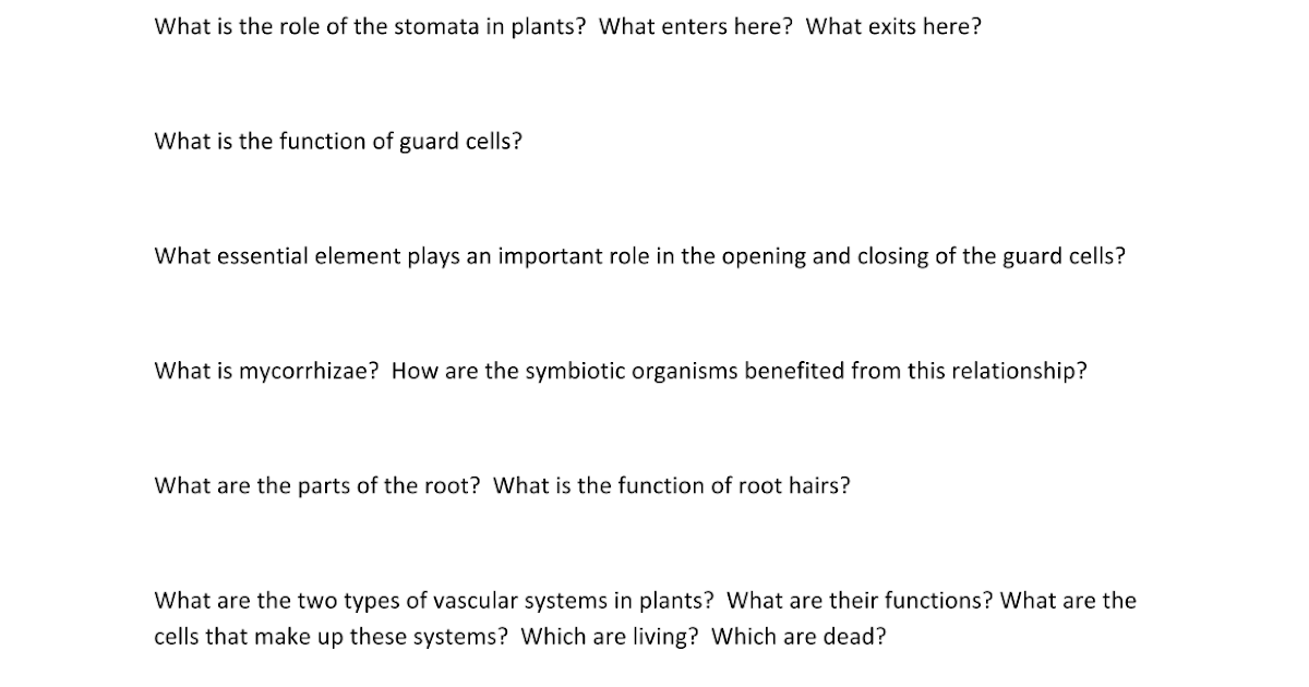 Plant Unit Test Review Google Docs