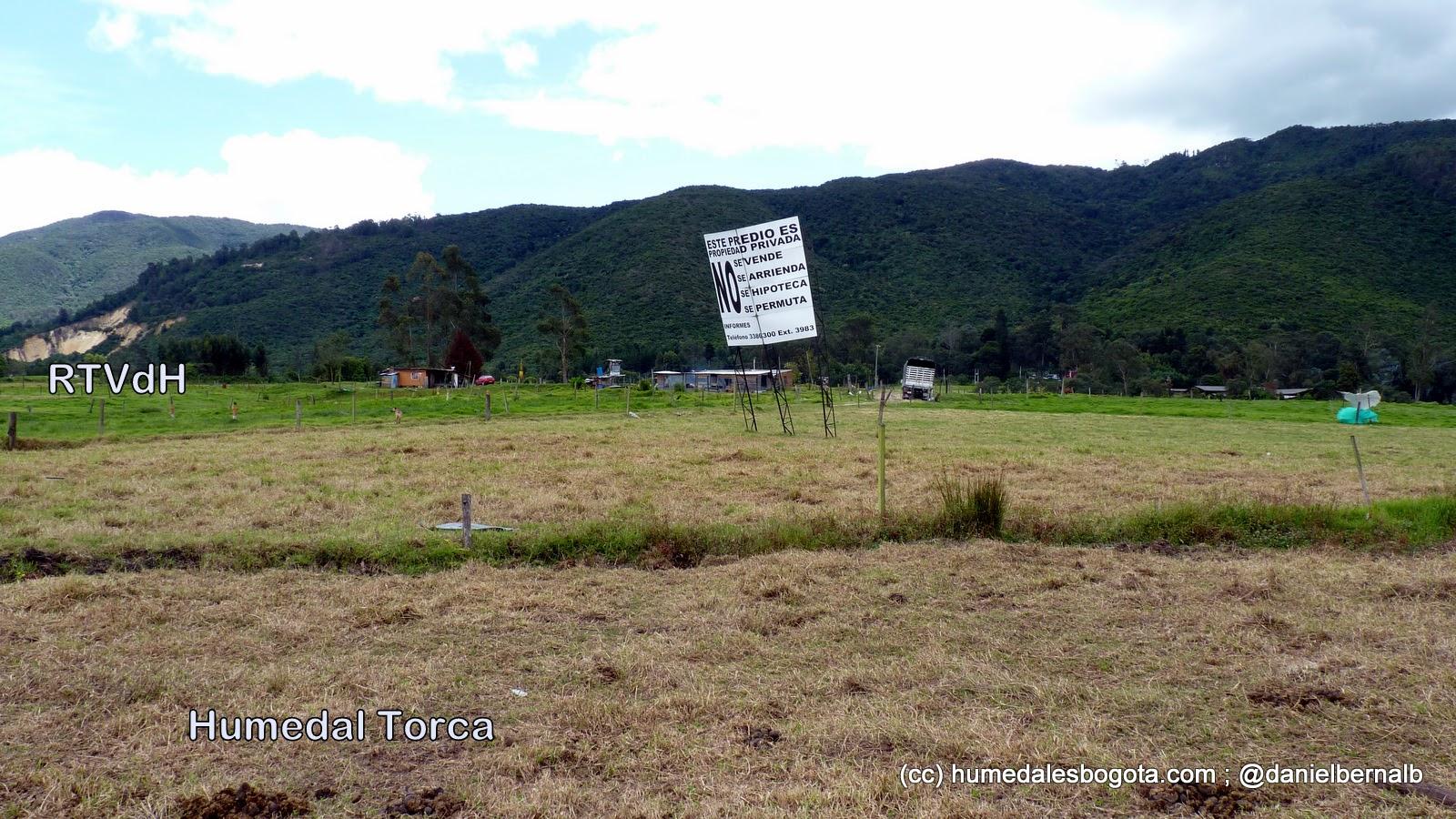 Humedal Torca-Guaymaral, sector Torca, vecino a la Reserva Thomas Van der Hammen