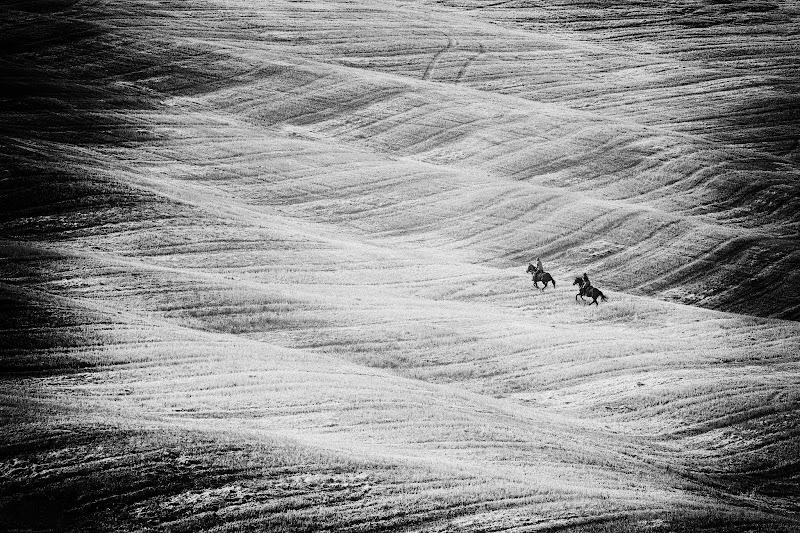 Nel montare un cavallo, noi prendiamo in prestito la libertà. (Helen Thomson) di samuele.laurenzi