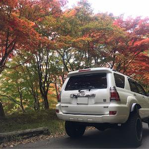 ハイラックスサーフ TRN215W のカスタム事例画像 ☆yushi☆さんの2020年10月29日18:46の投稿