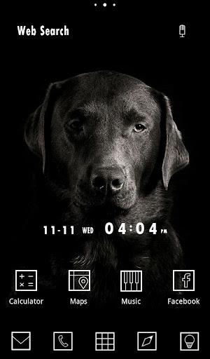 無料壁紙-Dog in the Dark-きせかえ・アイコン