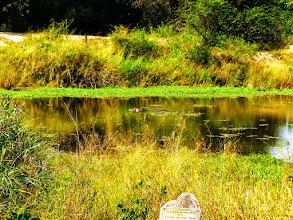 Photo: Kruger NP