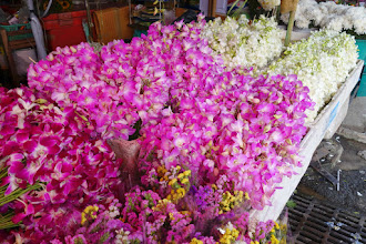 Photo: Now I know where to come to buy my orchids