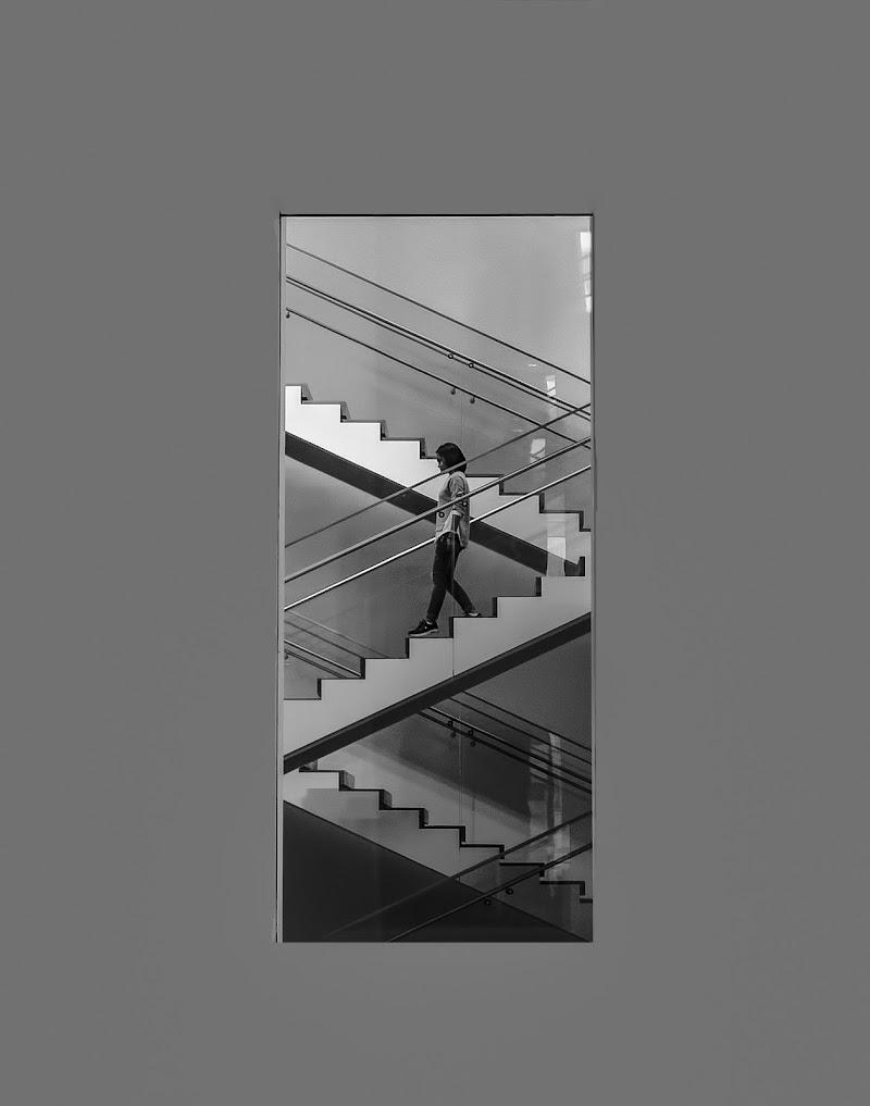 Il finestrone del Moma  di Luca160