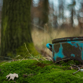 Old rusty pot by Thurisaz Photography - Artistic Objects Other Objects ( forrest, nature, blue, grass, outdoor, rusty, pot,  )