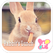 Cute Theme-Rabbit's Lunch-