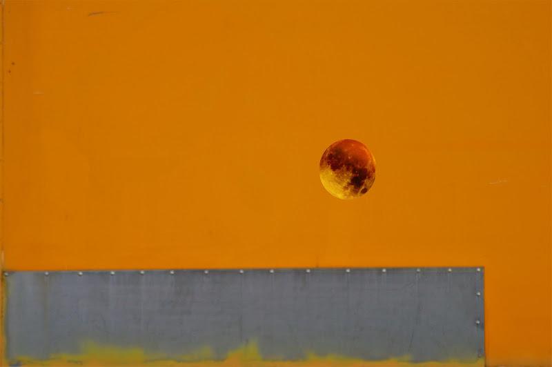 la luna gialla  di Tiz
