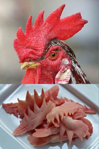 İğrenç Yiyecekler - Horoz ibiği