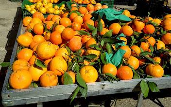 Photo: Local oranges