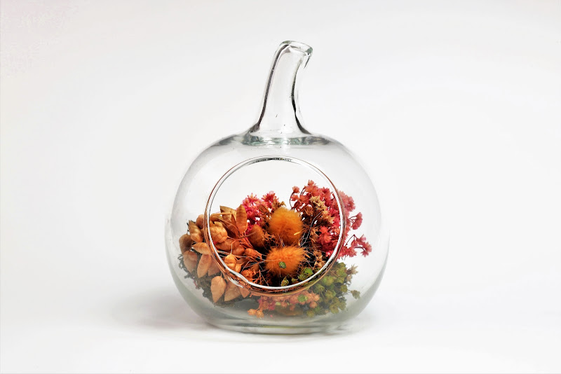 Vaso in vetro di ScrofaniRosaria