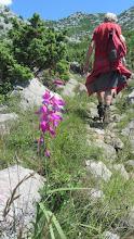 Photo: Wandeltocht in het Nationaal Park Paklenica vanuit Seline naar de canyon van de Velika Paklenica