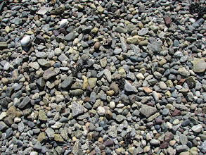Photo: Gravel beach at Mosley Point.