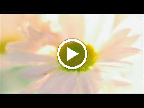 Video: A. Vivaldi  Op. 10 n. 6   Concerto for flute, strings   b.c. in G major (RV 437)   English Concert -