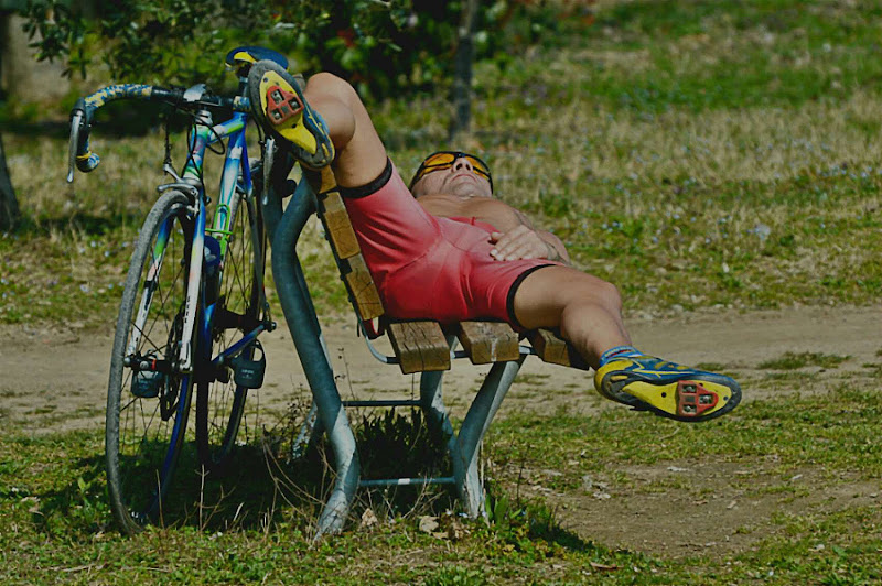 Bicycle di acquario