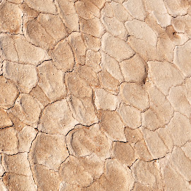 turned around by Savannah Eubanks - Abstract Patterns ( dry lake bed, desert )