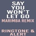 Say You Wont Let Go Marimba icon