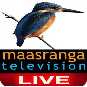 Maasranga Television for PC