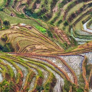 The-terraced-fields-at-Longsheng.jpg