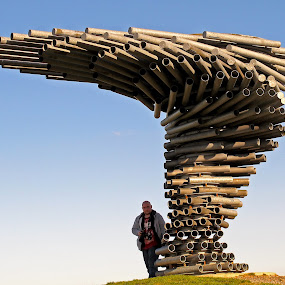 sINGING RINGING TREE. by Bob Rawlinson - Buildings & Architecture Statues & Monuments