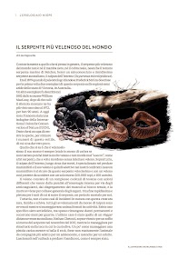 National Geographic Magazine Italia- screenshot thumbnail