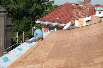 Photo: June 2005 - Month 22: Zenom on the roof