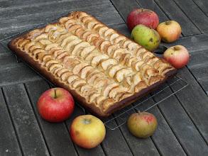 Photo: Apple slice cake