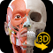 Muscle   Skeleton file APK for Gaming PC/PS3/PS4 Smart TV