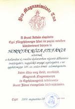 Photo: Hornyák Róza Stefánia munkájának elismerő oklevele