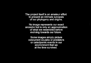 Photo: Introduction to: Evolution-Involution Slideshow http://evolution-involution.org
