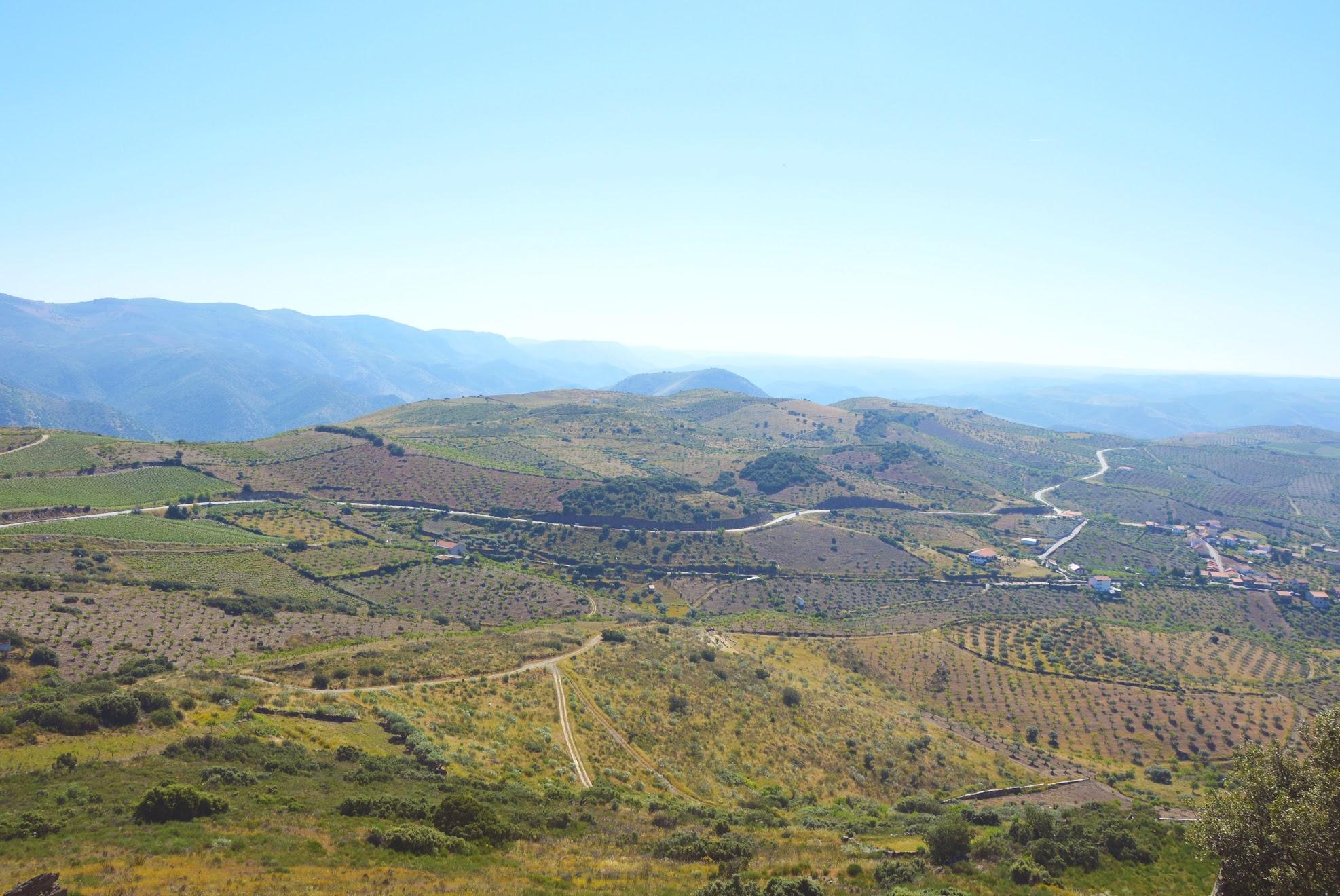 Douro-vallei