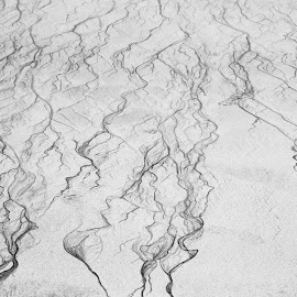 Ripples in the sand 2 by John Holmes - Abstract Patterns ( waves, random, sand, white, stream, background, beach, black, pattern, abstract )
