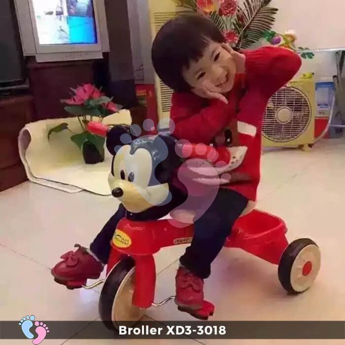 Xe đạp ba bánh Broller XD3-3018 1