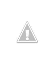Photo: Laughing Kookaburra