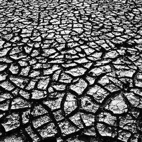 Faces of Drought by Debdatta Chakraborty - Landscapes Deserts