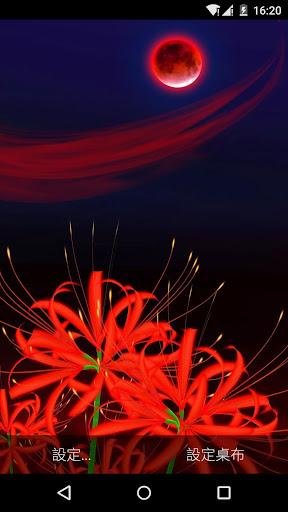 美艷紅蝶與妖嬈彼岸花3D動態桌布