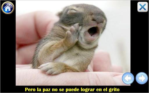 Hacer La Paz 1.0.0 screenshots 2
