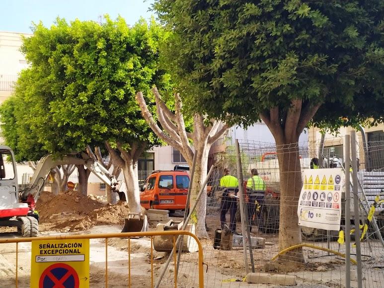 Hilera de arbolado en la zona de obras de Plaza Careaga