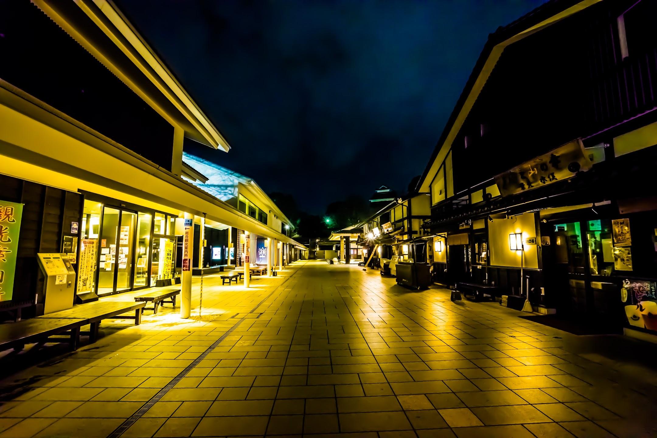 熊本 桜の小路 ライトアップ1
