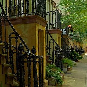 Historic Savannah by Jonathan Wheeler - Buildings & Architecture Architectural Detail ( railings, patterns, ironwork, historic district, savannah georgia, stairways )